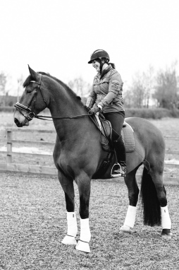 Dancing-Horse-325706